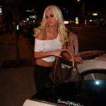 karissashannon_sheer_sunofhollywood_07
