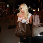 karissashannon_sheer_sunofhollywood_09