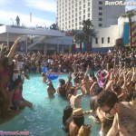 MTV Owns Spring Break