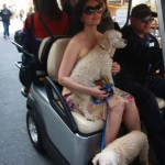 ashleyjudd_extra_puppy_grove_sunofhollywood_03