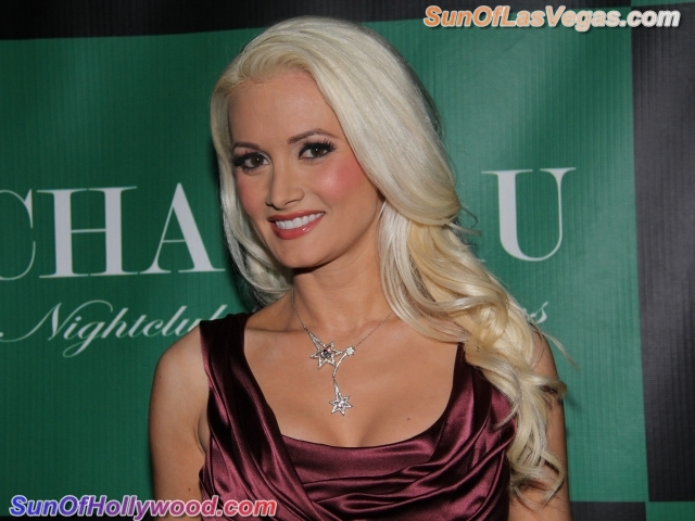 Holly Madison Beautifully Smiles... On A Red Carpet... Again