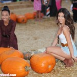 Big Pumpkins Stir Big Smiles
