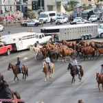 shaniatwain_caesarspalace_lasvegasblvd_horses_stlltheone_colosseum_sunofhollywood_07