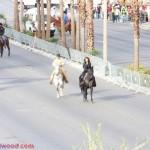 shaniatwain_caesarspalace_lasvegasblvd_horses_stlltheone_colosseum_sunofhollywood_14