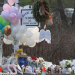 sandyhook_newtown_thedayafter_sunofhollywood_37