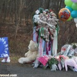 sandyhook_newtown_thedayafter_sunofhollywood_44
