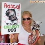 Coco & Rascal.. the Cutest World's Ugliest Dog