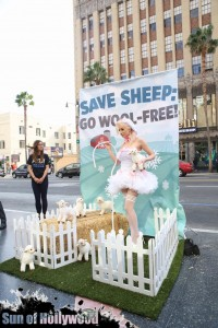 courtney stodden peta sheep sheering hollywood highland garry sun prophecy sunofhollywood 09