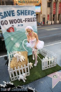 courtney stodden peta sheep sheering hollywood highland garry sun prophecy sunofhollywood 17