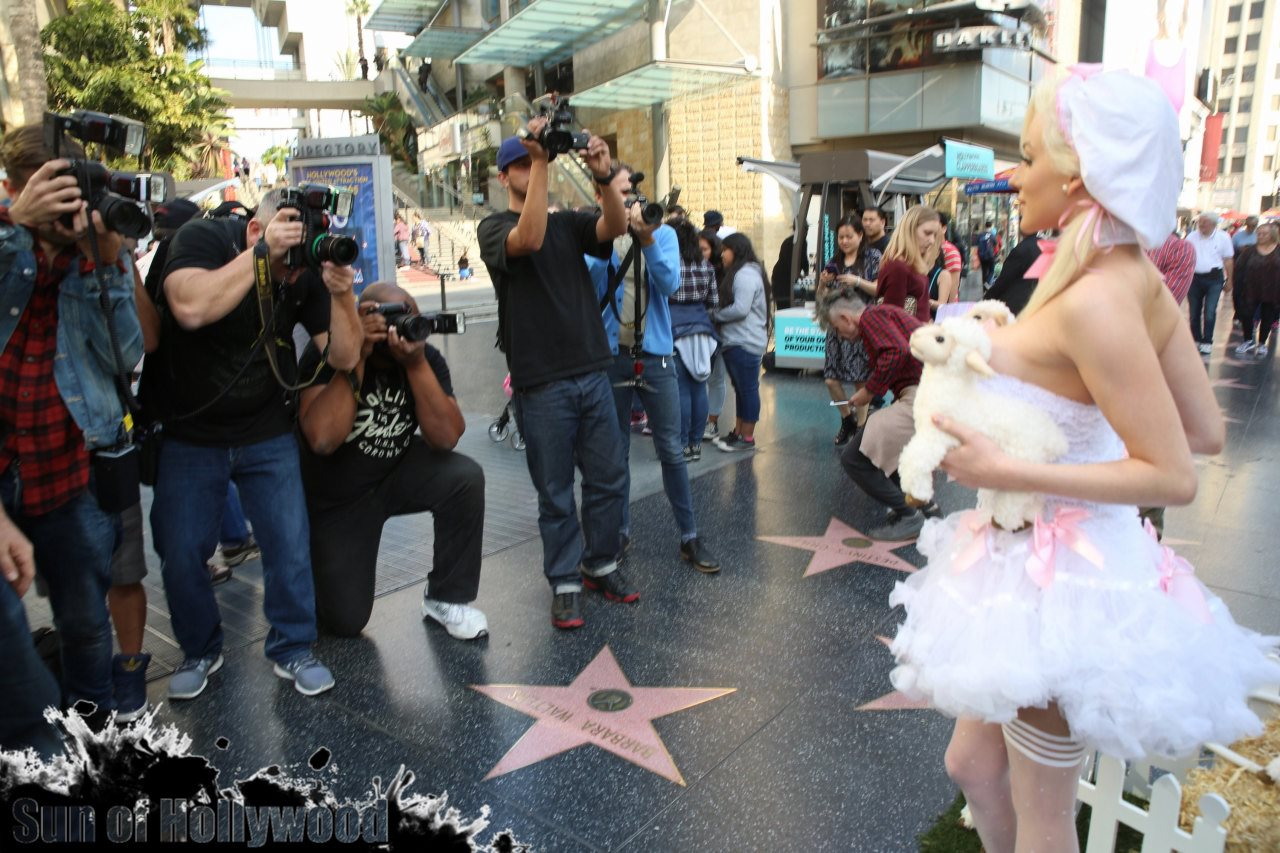 courtney stodden peta sheep sheering hollywood highland garry sun prophecy sunofhollywood 24